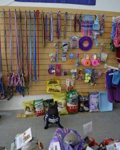 Artemisa, Forrajería y Pet Shop