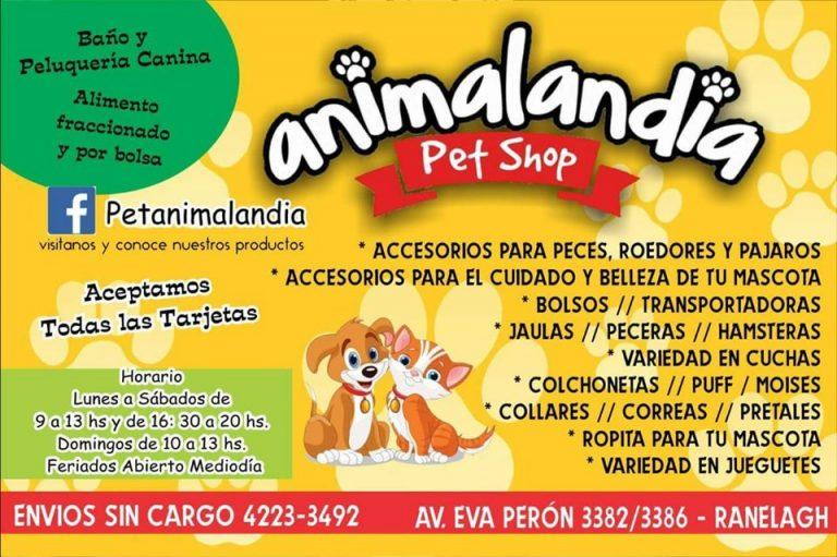 Animalandia Pet Shop 1