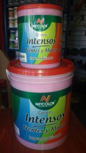 Productos Pinturería Color 21 (8)