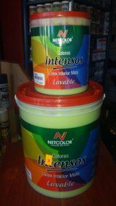 Productos Pinturería Color 21 (9)